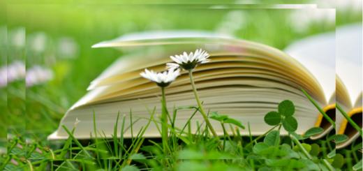 Avoin kirja nurmella.